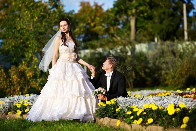 Sposo e sposa felici fotografia stock libera da diritti
