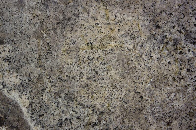 Spoted marmor detalized texturerad bakgrund arkivbild
