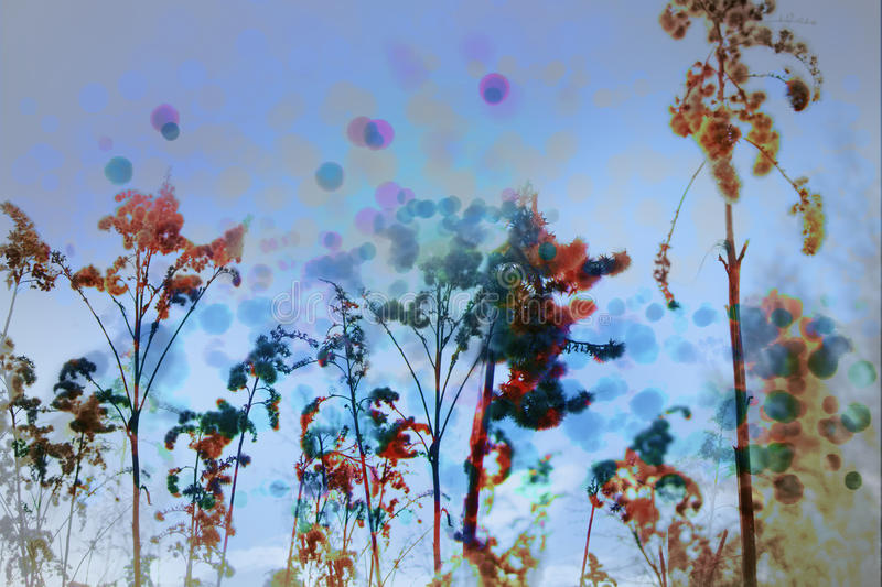 Spots in the reeds. And cold landscape royalty free illustration