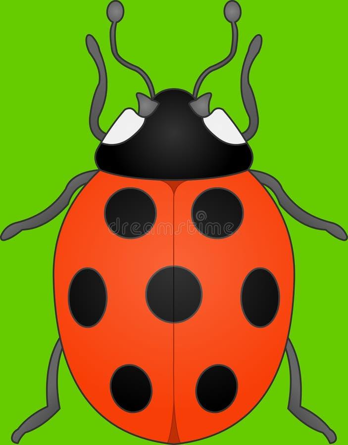 Spotty insect van de Dame stock afbeelding