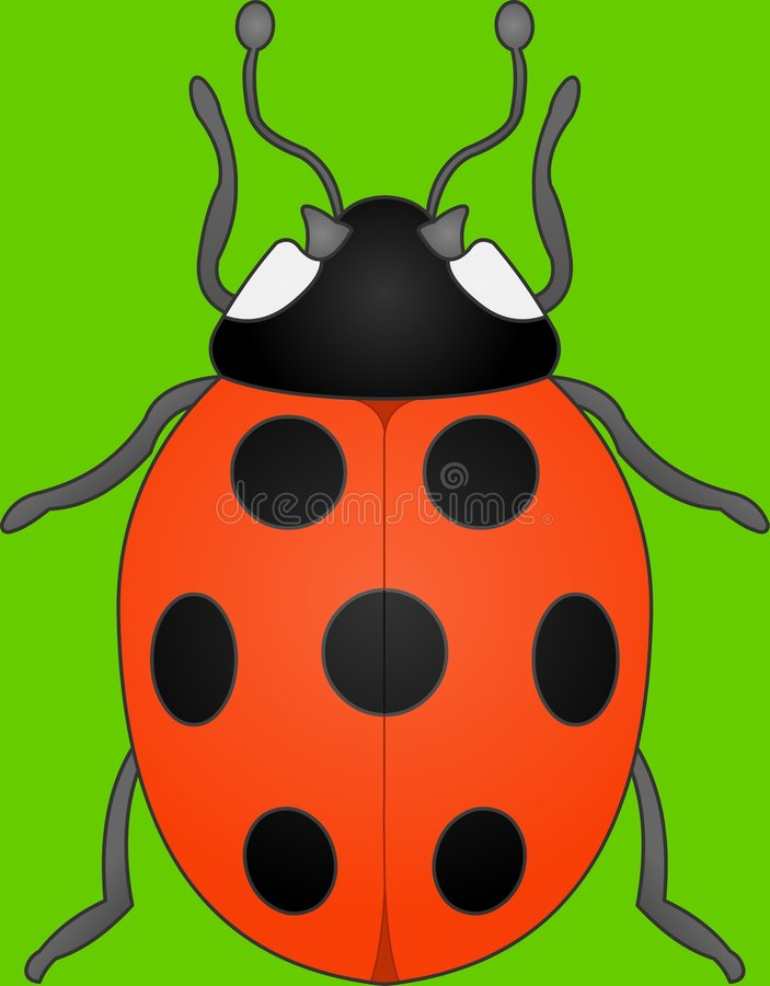 Spotty Lady bug. Vector illustration royalty free illustration