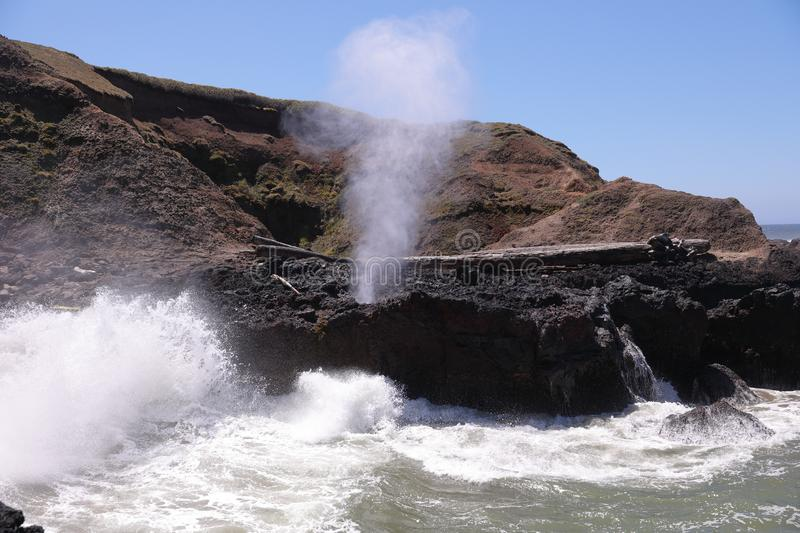 Spouting Horn natural phenomena at Cape Perpetua headland. Fountain of steam and salt water erupts from a hole in a basalt rock. Under the pressure of high tide stock photo