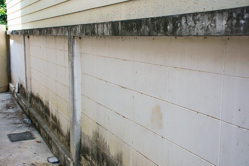 Sprünge auf den Wänden schimmelig stockfoto