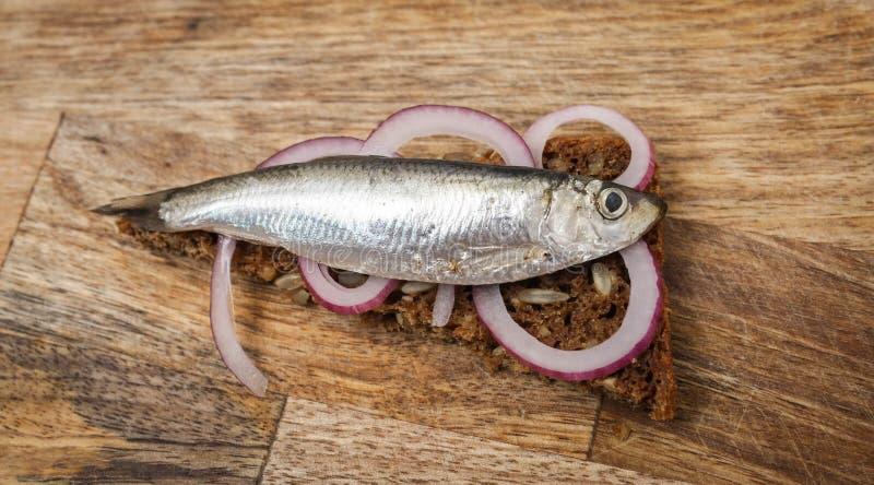 Sprat på ett svart bröd Fisk med bröd och röd lök på ett styckbord royaltyfria bilder