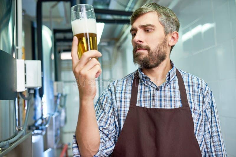 Sprawdzać ilość Świeży piwo obrazy royalty free