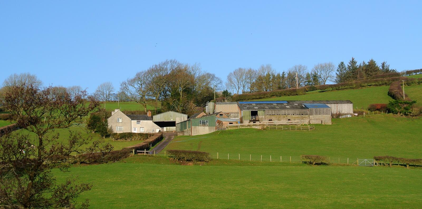 Hill farm in winter sunlight. A sprawling hill farm, on grassy slopes bathed in winter sunshine, barns, house, a skyline with fir trees stock photos