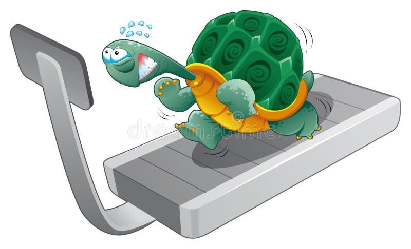 sprawność fizyczna żółw royalty ilustracja