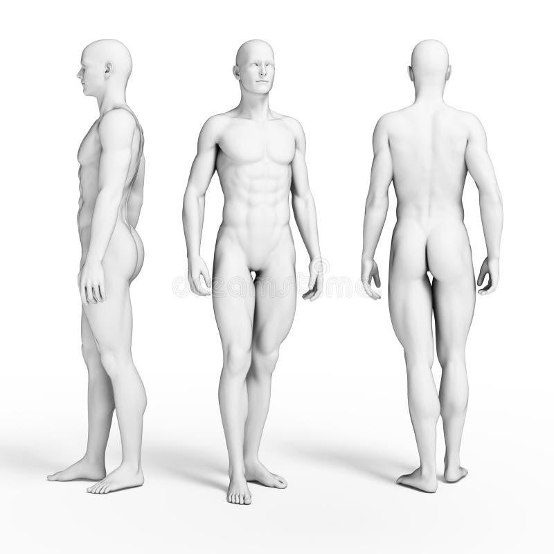 Sprawność fizyczna faceci ilustracja wektor