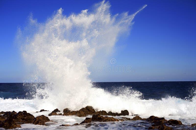 Spray lizenzfreie stockfotografie