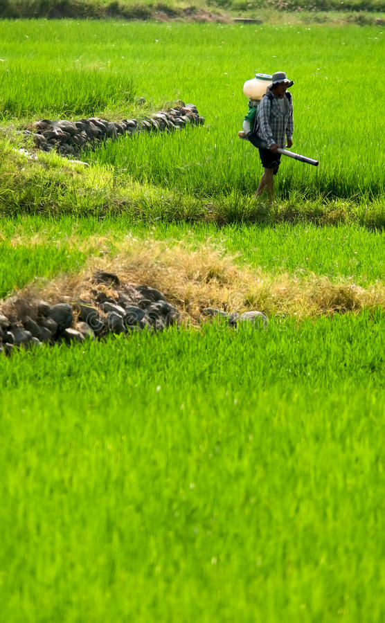 spray för lantgårdbondeinsekticid royaltyfria foton
