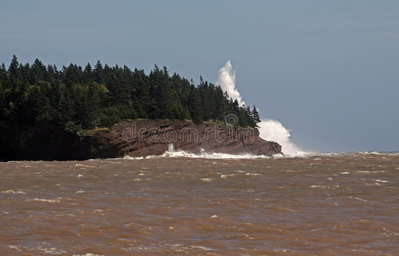 Download Spray ocean coast stock image. Image of rock, spray, beach - 20946669