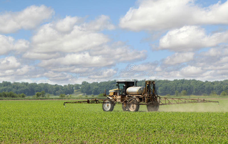 Download Spraying Corn Crop stock image. Image of agriculture - 25197531