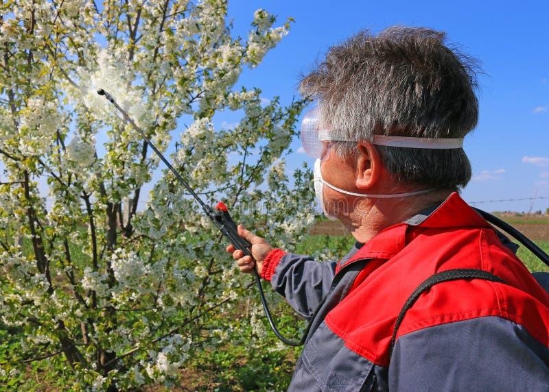 Spraying pesticide stock photos