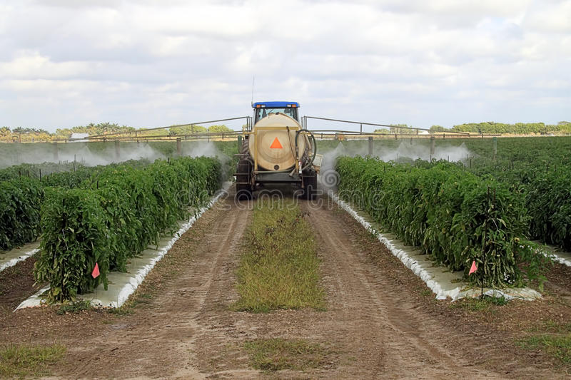 Download Spraying Pesticides stock image. Image of farmer, kill - 17878591