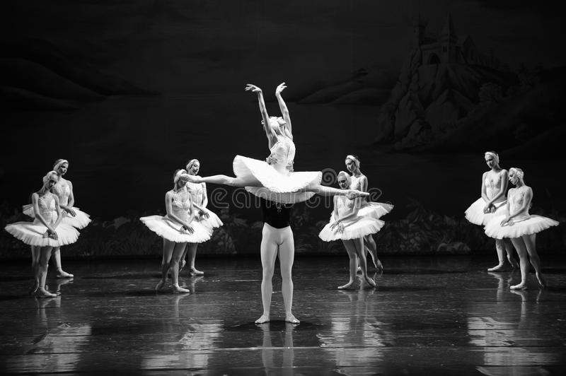 Spread the wings to fly-ballet Swan Lake royalty free stock photography