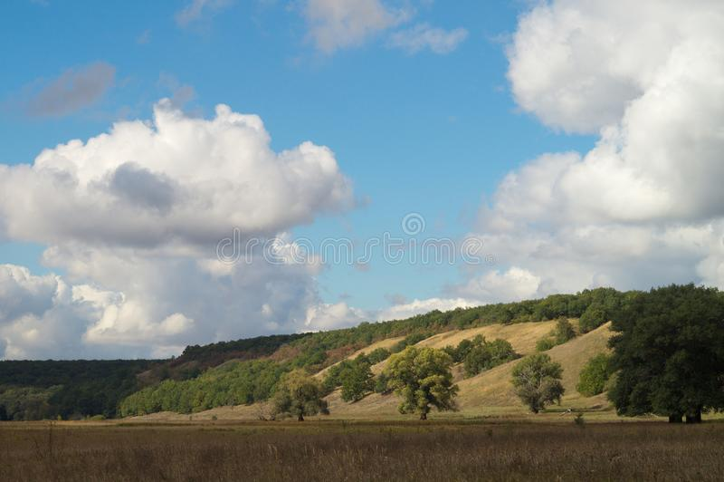 A spreading trees in a sunny picturesque autumn hilly valley, against a background of a clear blue sky with sparse clouds. stock photo