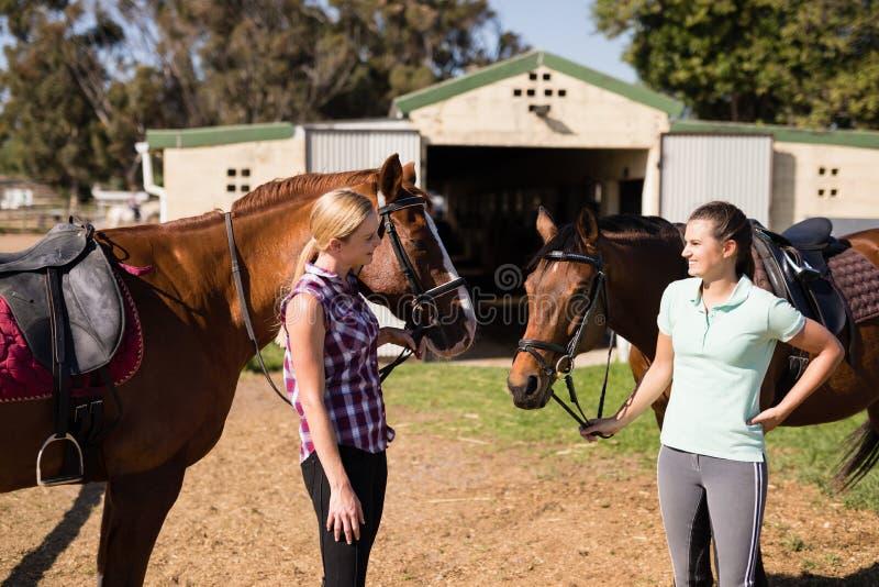 Sprechende Freundinnen bei der Stellung mit Pferden stockfotos