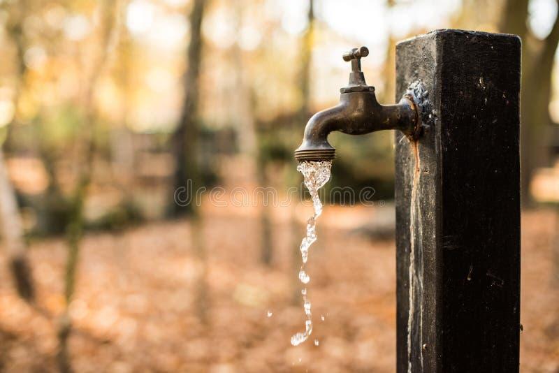 Spreco dell'acqua immagini stock