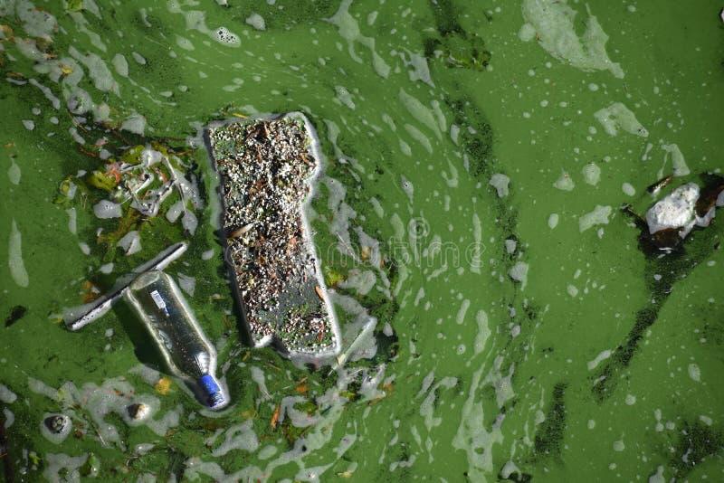 Spreco di plastica nel fiume Berlino della baldoria immagini stock libere da diritti