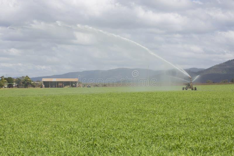 Sprej Irrigator och lantgårdskjul arkivfoto