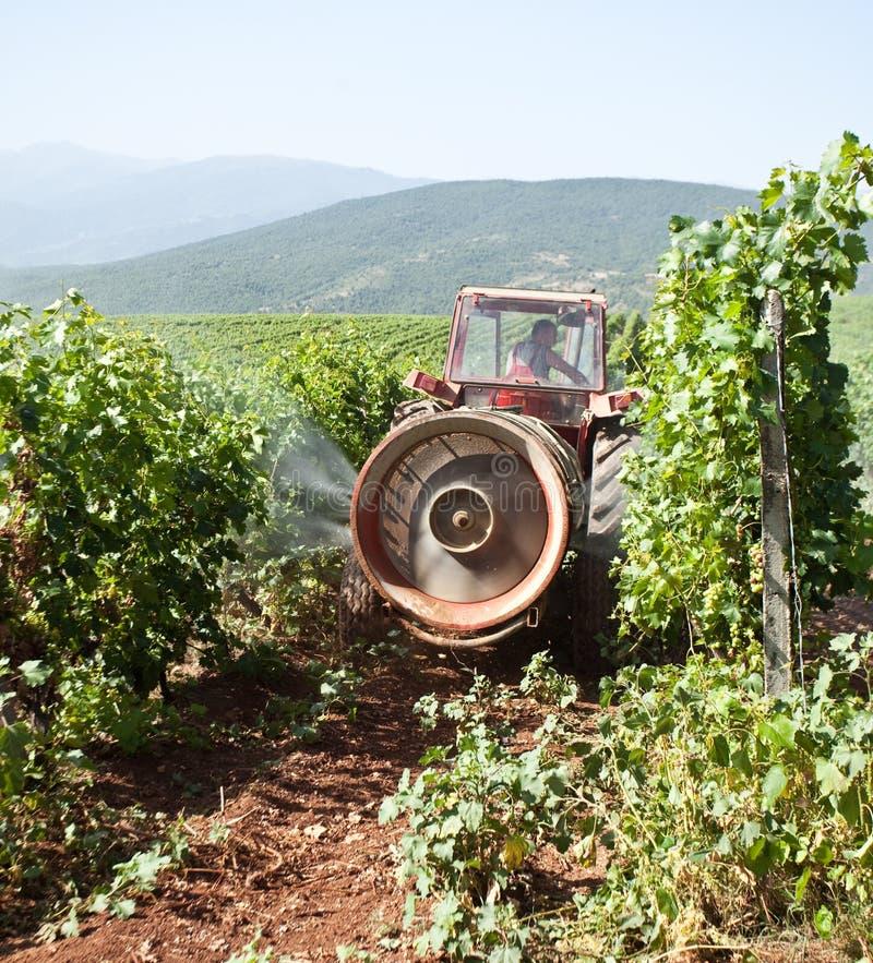 sprejande traktorvingård för fält arkivbild