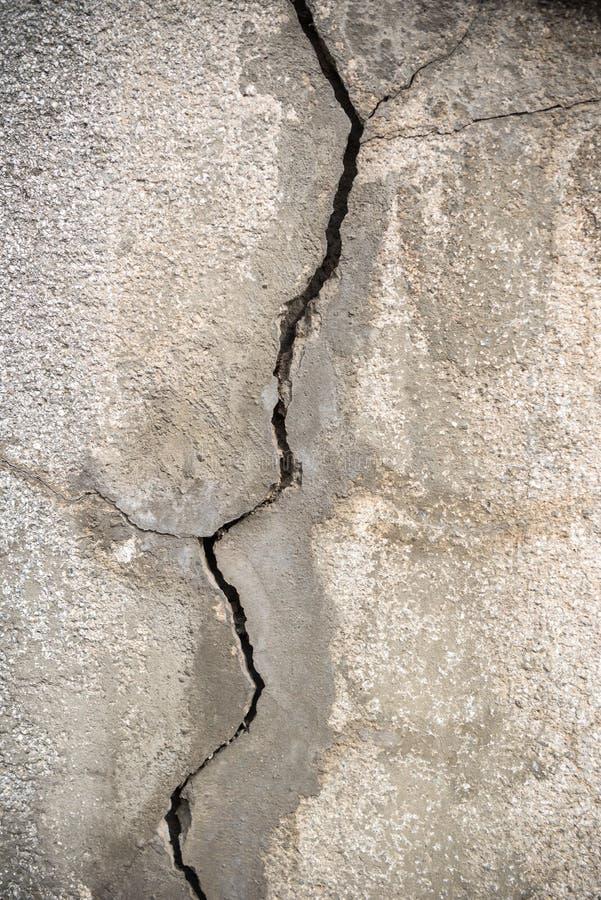 Spricka i betongväggen arkivbilder