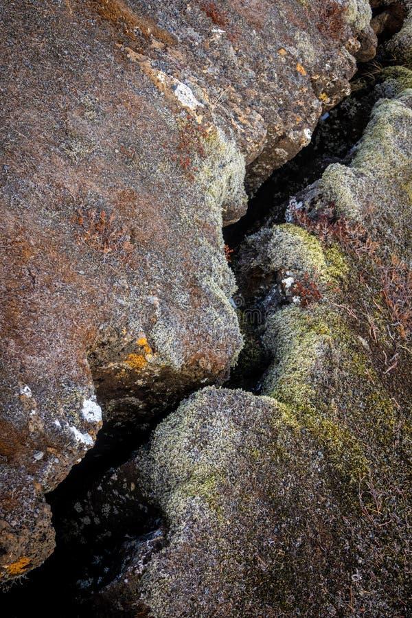 Spricka i jorden arkivfoto