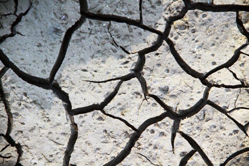 Sprickor av den vita jorden i den torra säsongen, effekten av global uppvärmning royaltyfri foto