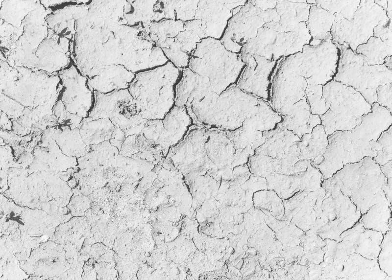 Sprickor på den salta jordningen Texturerad bakgrund för design royaltyfria foton