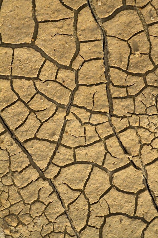 sprickor torkar jord arkivbilder