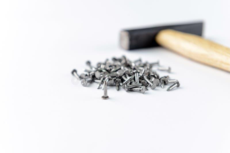 Sprida litet järn spikar med hammaren som isoleras på vit bakgrund arkivfoto