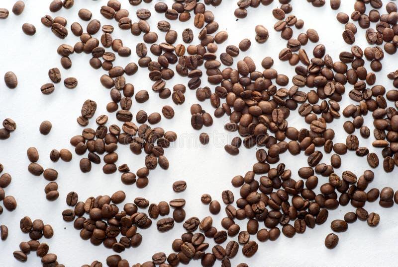 Spridda bruna kaffebönor på en vit bakgrund royaltyfri fotografi