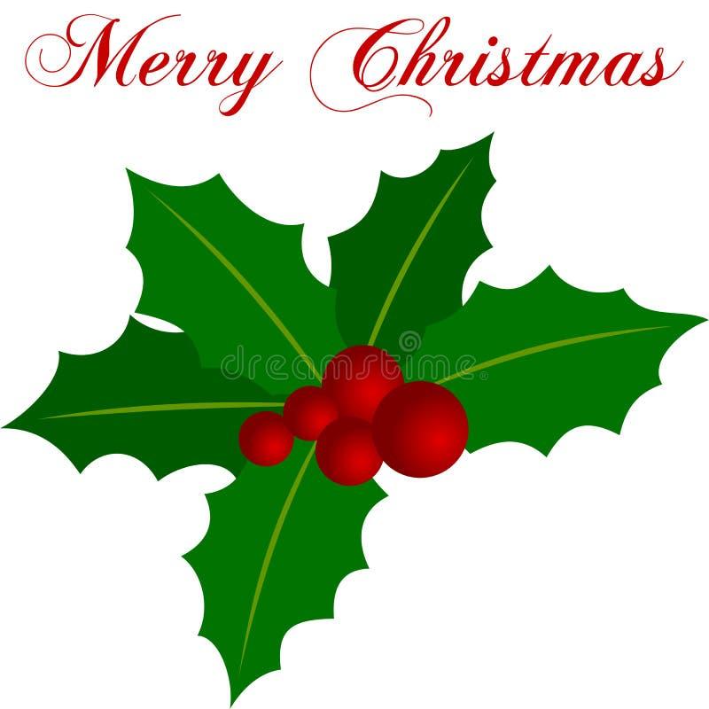 Sprig do azevinho do Natal ilustração do vetor