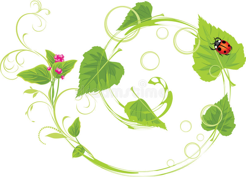 Download Sprig With Flowers And Birch Leaves Stock Vector - Image: 23201274