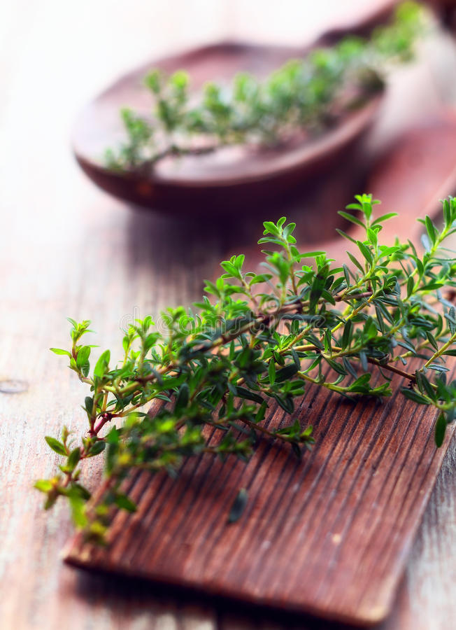 Sprig of fresh thyme. Lying on a rustic wooden chopping board in a country kitchen to be used as a seasoning in cooking royalty free stock photo