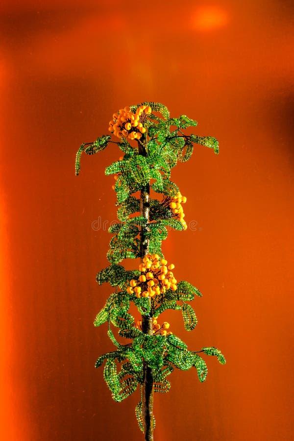 Sprig koraliki na brązowym tle zdjęcia royalty free
