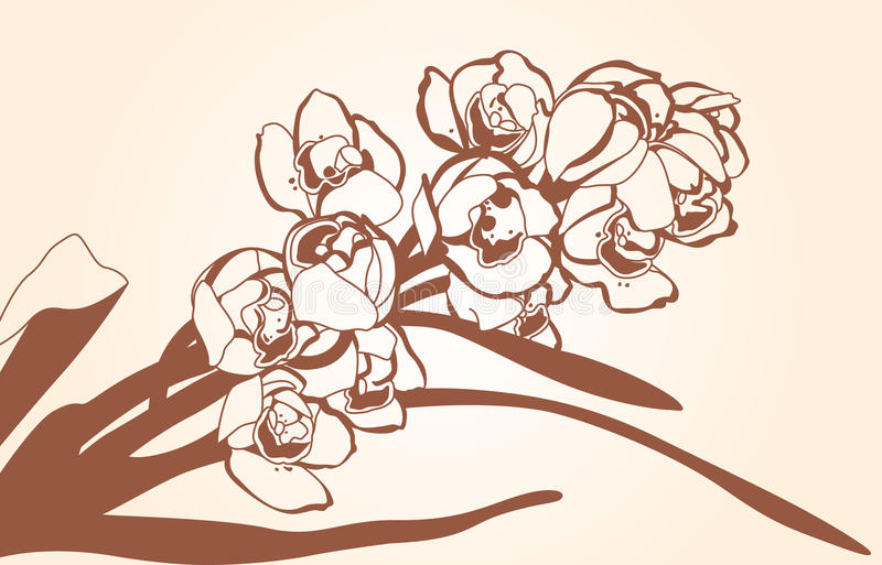 Sprig Of Orchid Royalty Free Stock Photo