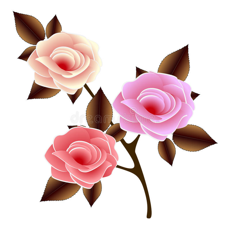 Download Sprig With Roses On A White Background. Stock Vector - Image: 83702130