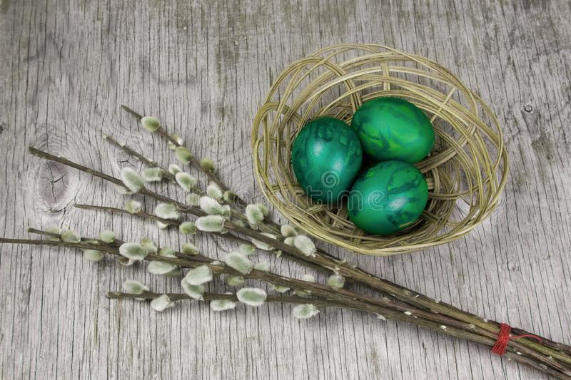 Sprig twig of willow and eggs painted green. Sprig of pussy-willow and eggs painted green on grey wooden background , vintage easter card royalty free stock photo