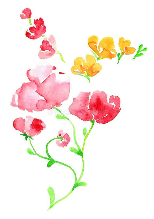Sprigs menchii i koloru żółtego kwiaty ilustracja wektor