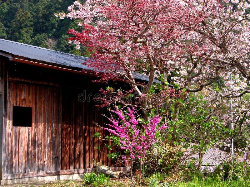 Download Spring Stock Photos - Image: 15793
