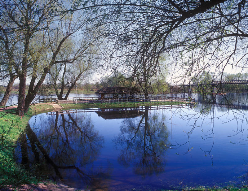 Download Spring. stock photo. Image of spring, outdoors, reflection - 29136352