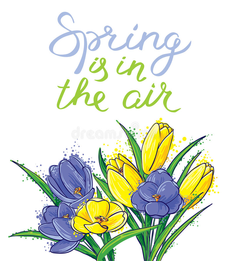 Spring is in the air lettering. Seasonal card with bouquet of c. Spring is in the air lettering inspirational quote. Hand-drawn calligraphic text. Seasonal card stock illustration