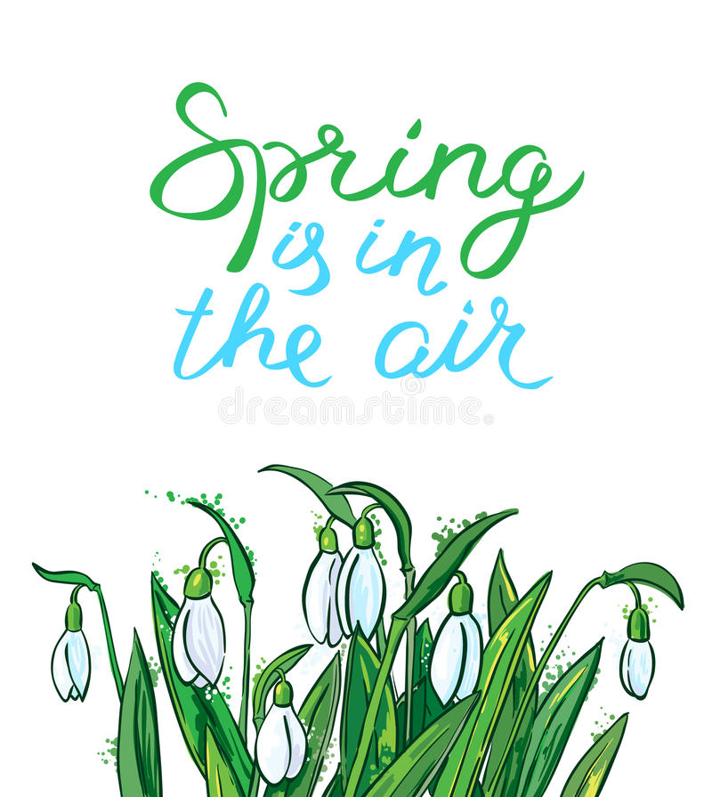Spring is in the air lettering. Seasonal card with bouquet of s. Spring is in the air lettering inspirational quote. Hand-drawn calligraphic text. Seasonal card royalty free illustration