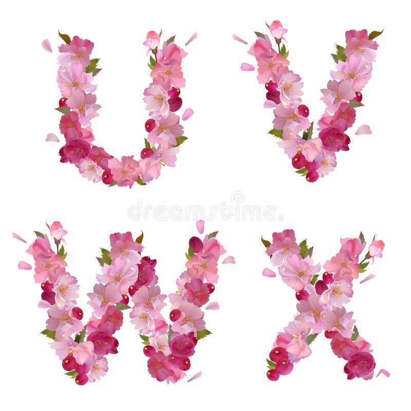 Spring alphabet with cherry flowers UVWX stock illustration