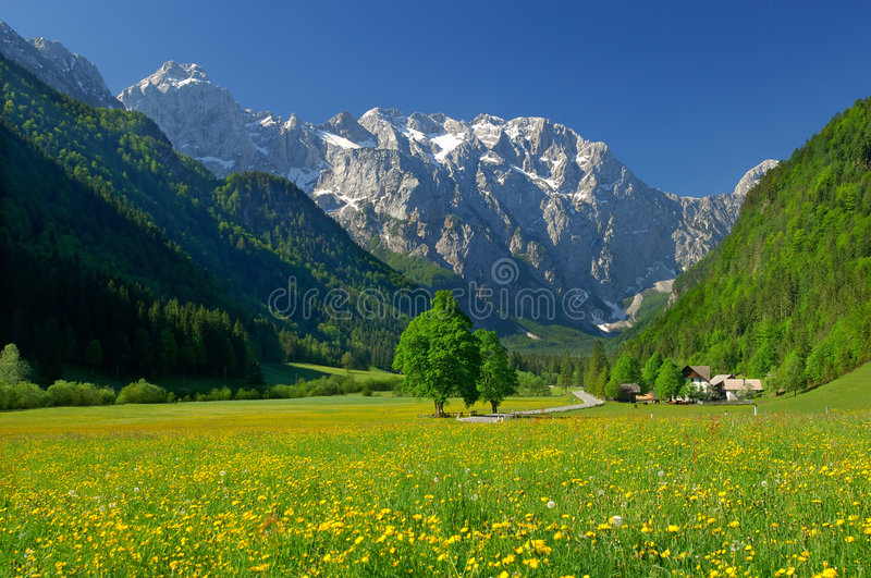 Spring in alpine valley stock photography