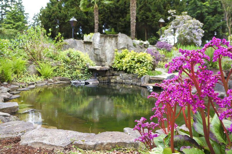 Spring American Northwest home water pond with landscape garden. Spring American Northwest home water pond, large rock with landscape garden stock photos