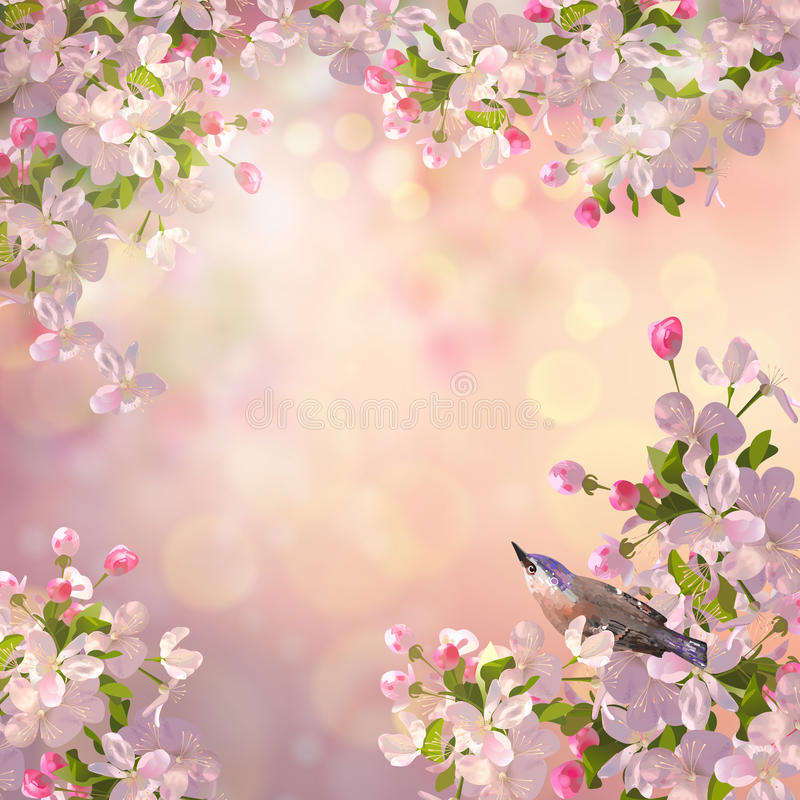 Download Spring Apple blossom stock vector. Illustration of background - 89619347