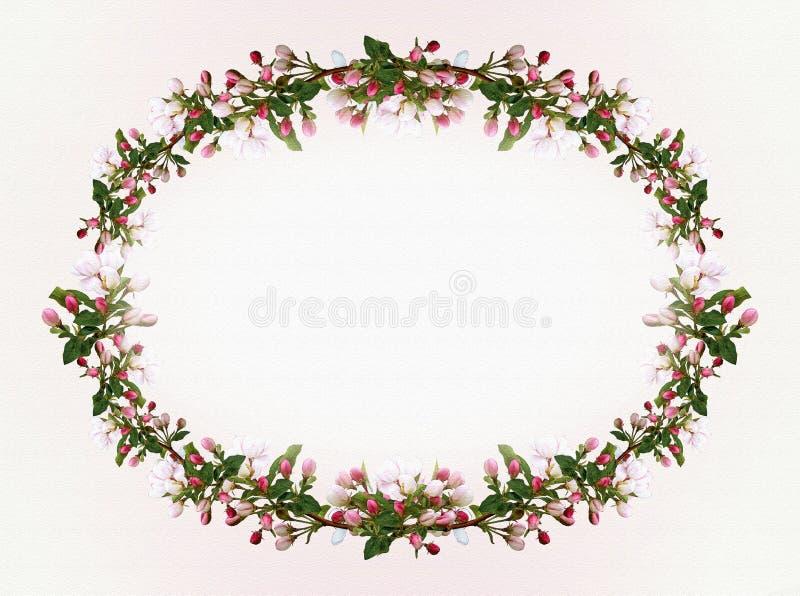 Flowers Apple tree oval frame background stock illustration