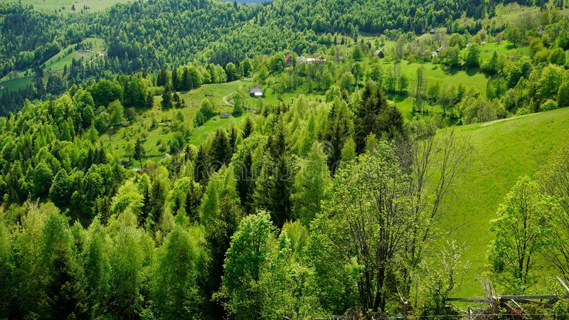 Spring in Apuseni Mountains. A spring landscape in Apuseni mountains, Transylvania royalty free stock image